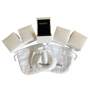 PANDORA Packaging 5 Charm Boxes & 3 Pouches